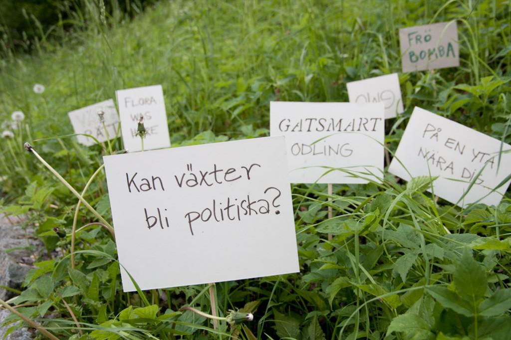 växtpolitik C Malin Lobell