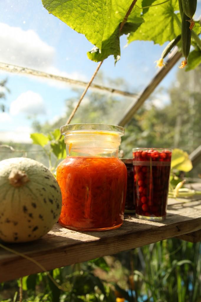 Sirkkas grönsaker ©Ulrika Flodin Furås