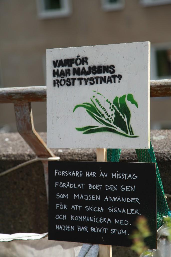 Kan växter bli politiska? Stencilkonst av Malin Lobell, medlem i Gröna Linjen-projektet, Gröna linjen cykelsafari ©Ulrika Flodin Furås