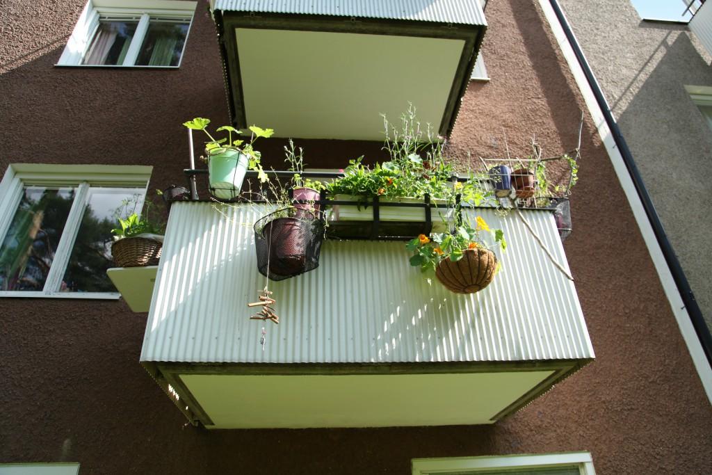 gerillaodling, balkongen som är plantskola ©Ulrika Flodin Furås