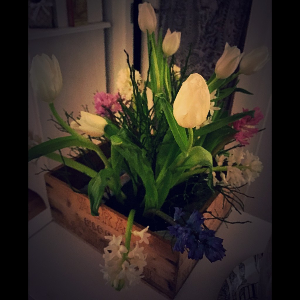 Tulpan hyacint iPhone Ulrika Flodin Furås
