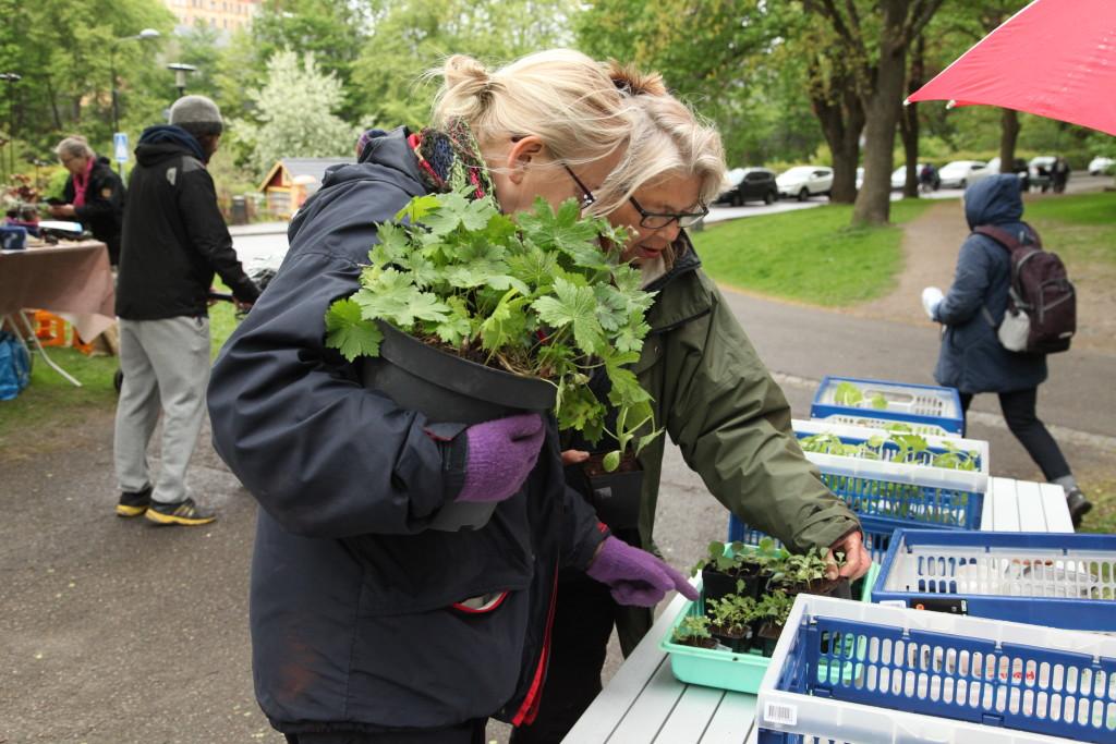 Trädgårdsloppis ©Ulrika Flodin Furås