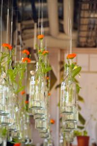 Vaser som hänger ifrån taket