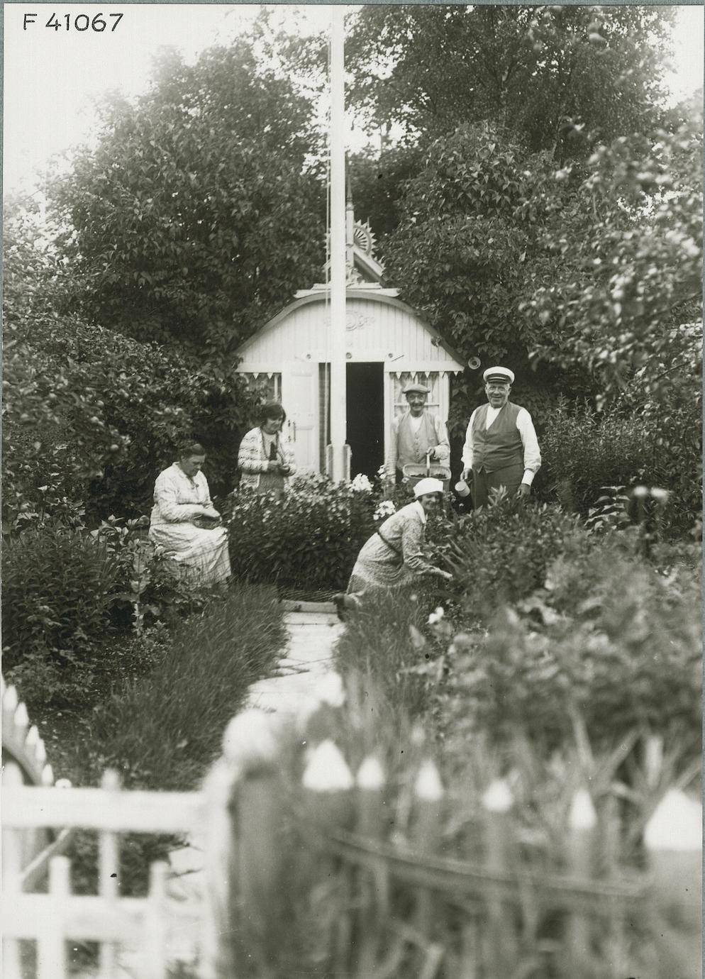 Koloniträdgård historia koloniträdgårdshistoria