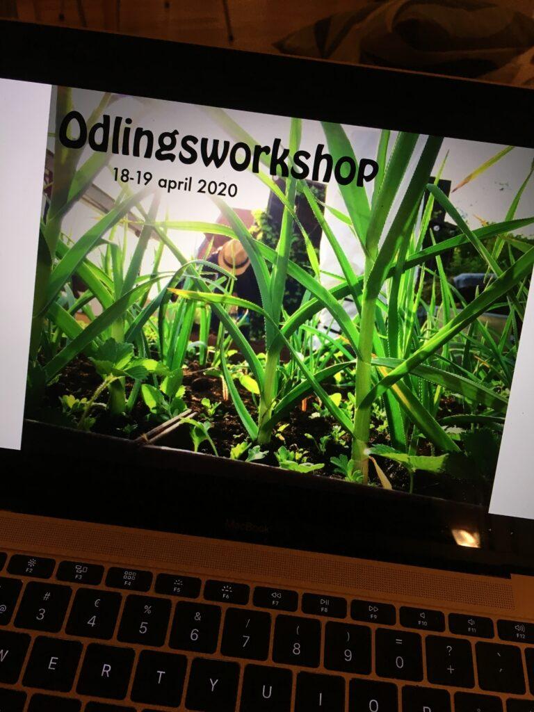 Digital odlingskurs