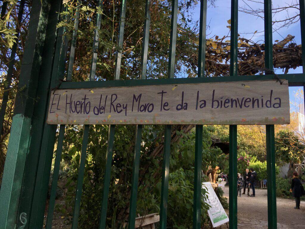 stadsodling Sevilla