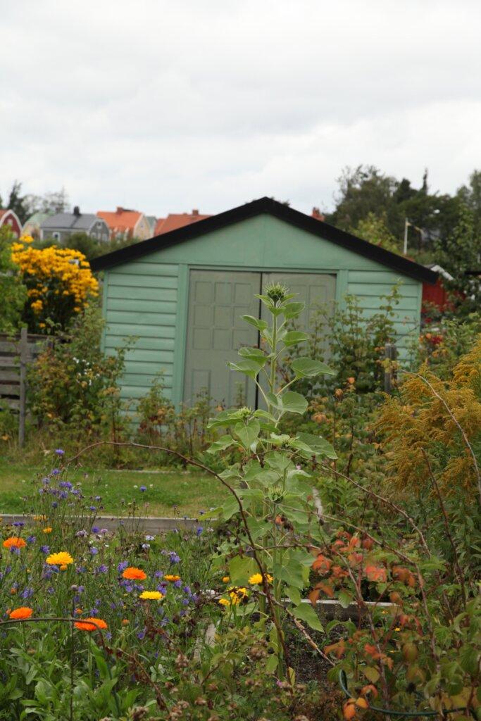 Södra kolonin i Gävle