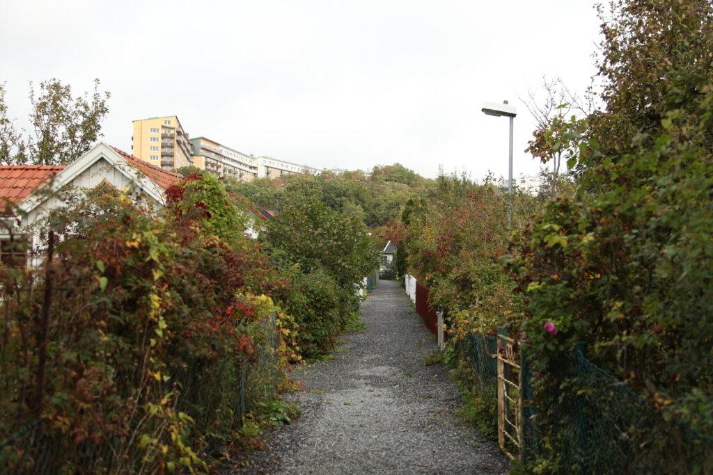 Slottskogskolonien Göteborg