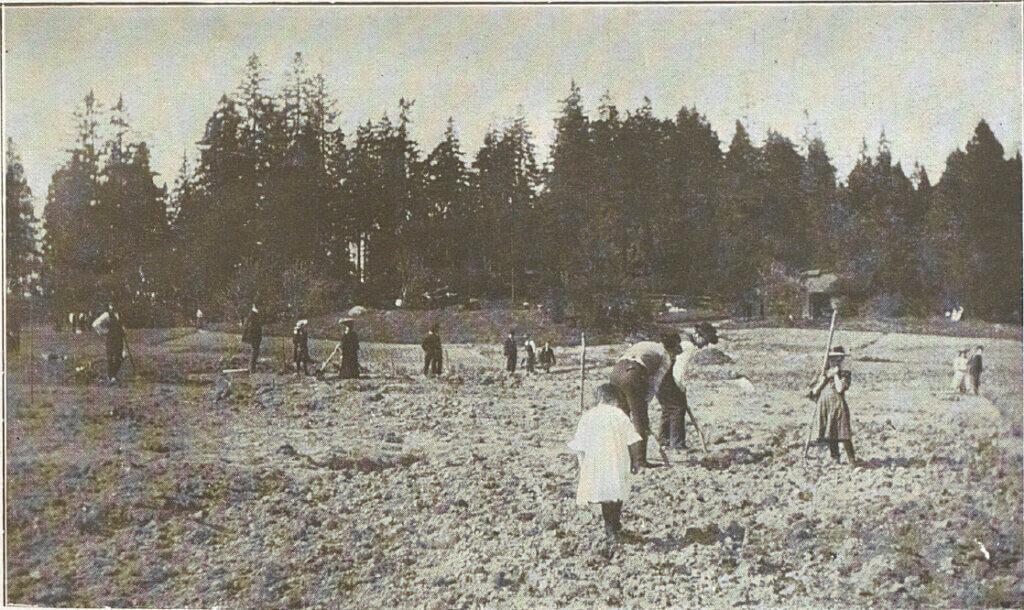 Vårgrävning Söderbrunn 1905