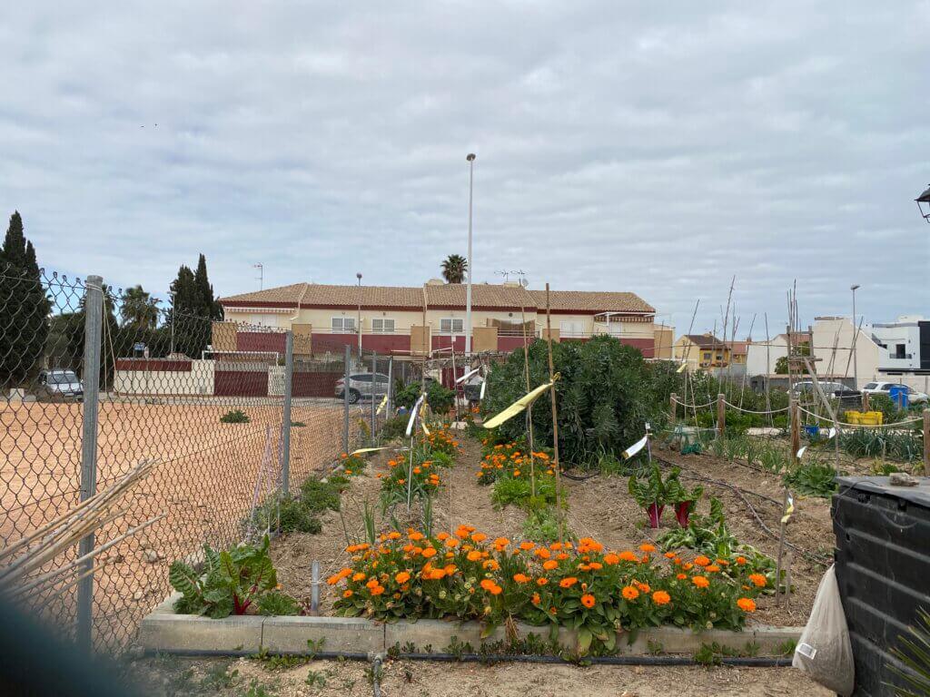 Huertos Urbanos en San Pedro del Pinatar