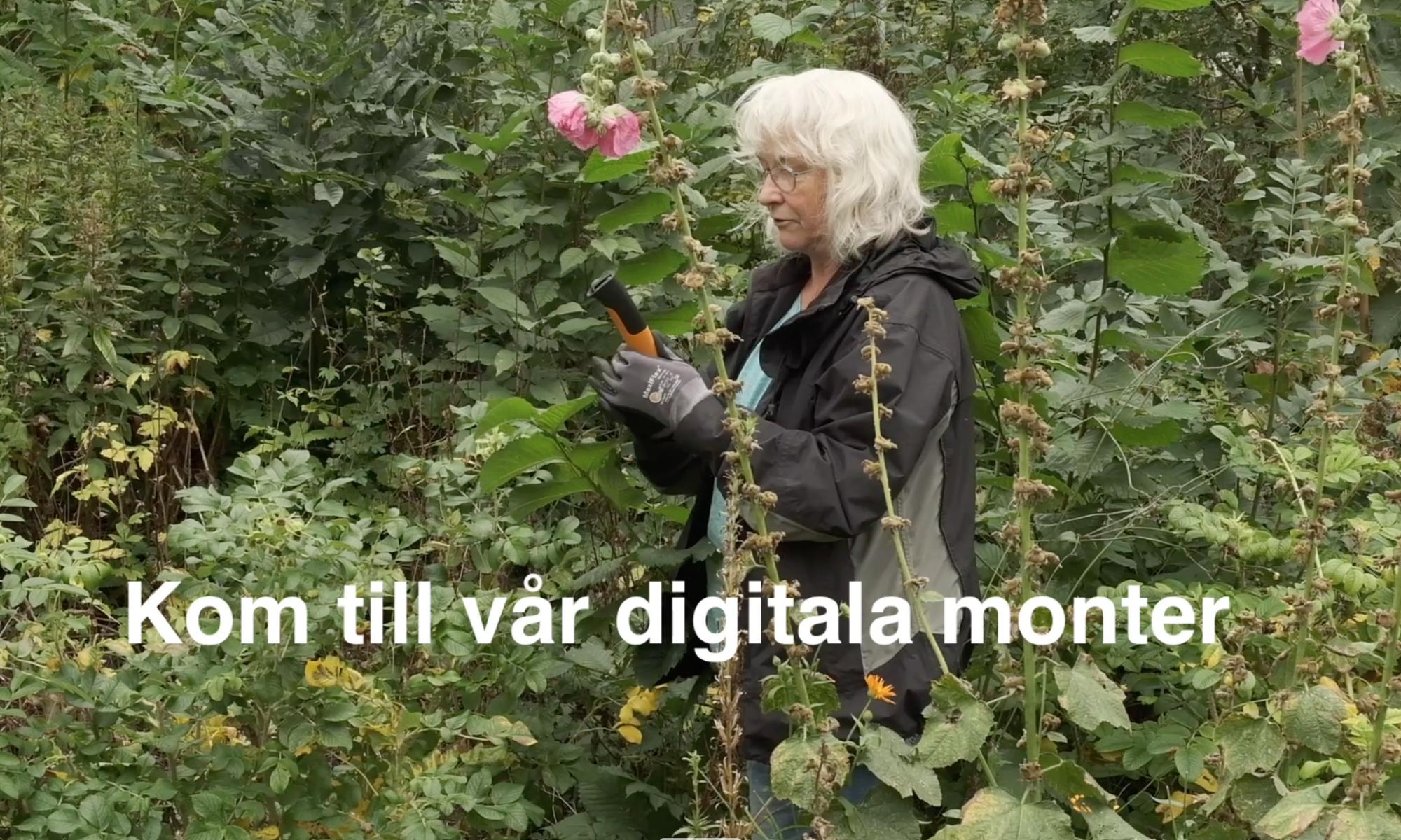 Nordiska Trädgårdar 2021